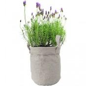 geschenkartikel-shopping Lavendel Jutebag Tasche Gartenkräuter Samen Saatgut Geschenkidee